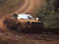 Rally Celica - Photo Nr: 1022